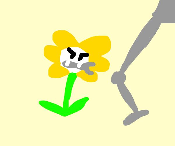 Flower Mechanic