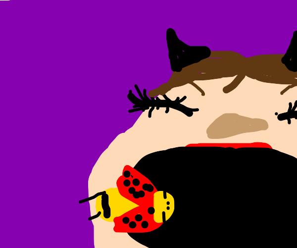 ladybug going into a neko's mouth