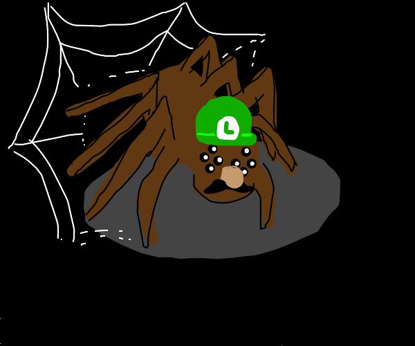 Cursed spider Luigi