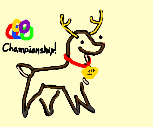 Reindeer Olympian