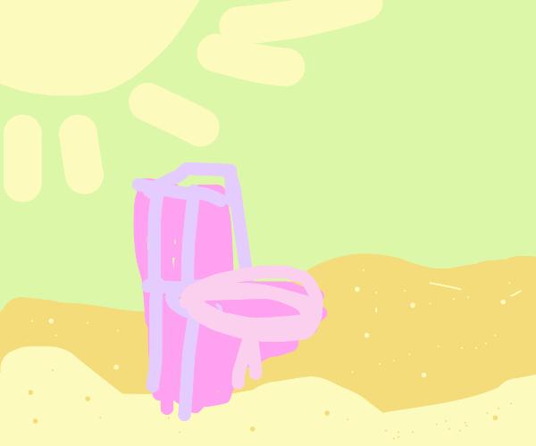 pink toilet in the desert