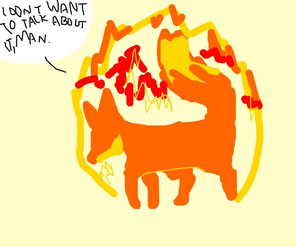 Firefox on fire
