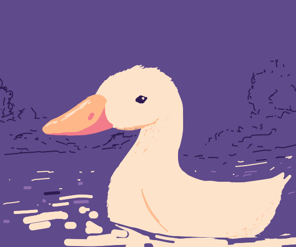 duck in pond chilling out
