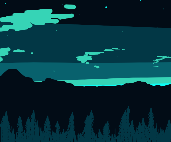 forest nighttime landscape