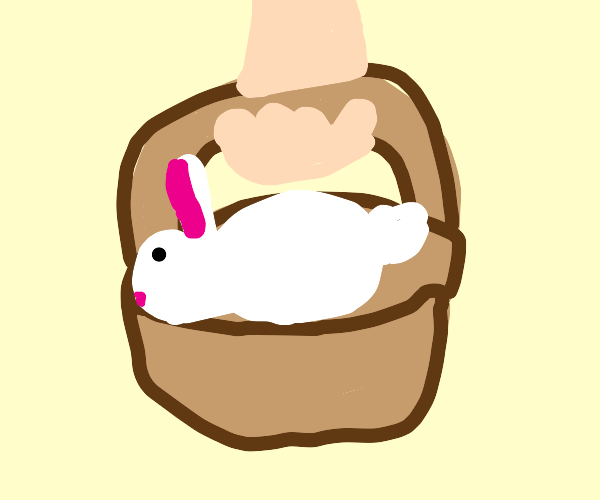 A rabbit sleeps in a basket being carried