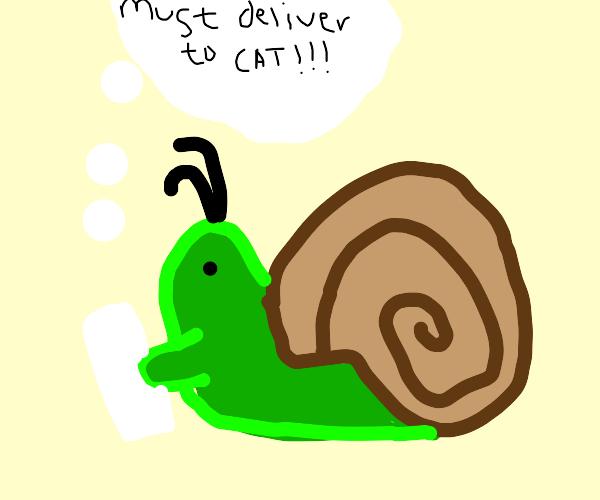 Snail delivering letter to cat