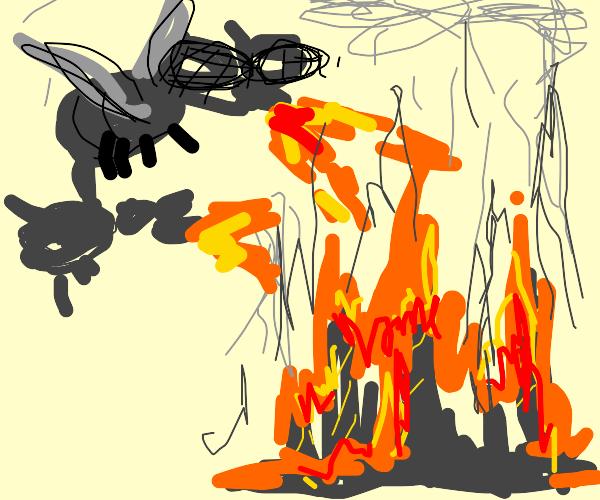 Giant flies burn down a city