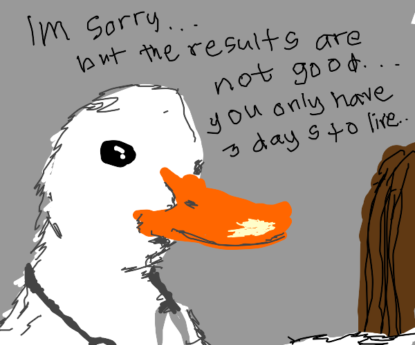 Doctor goose says my result is terminal DDD: