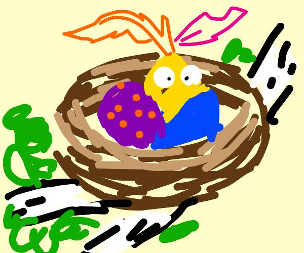 Silly Nest