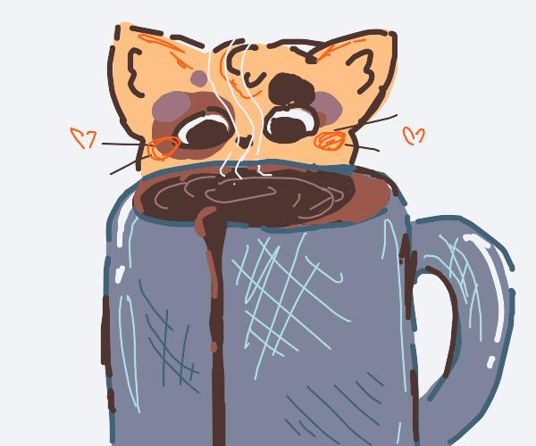 Fennec kitty enjoys hot coffee