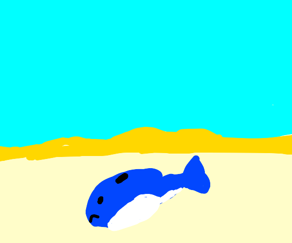 A whale in the middle of a desert
