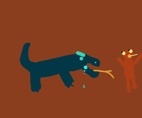Komodo be hungry.