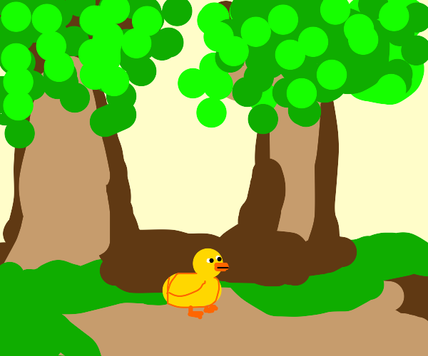 Duck in the Forest