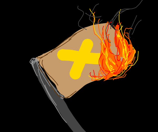 burning a flag with a yellow x on it!