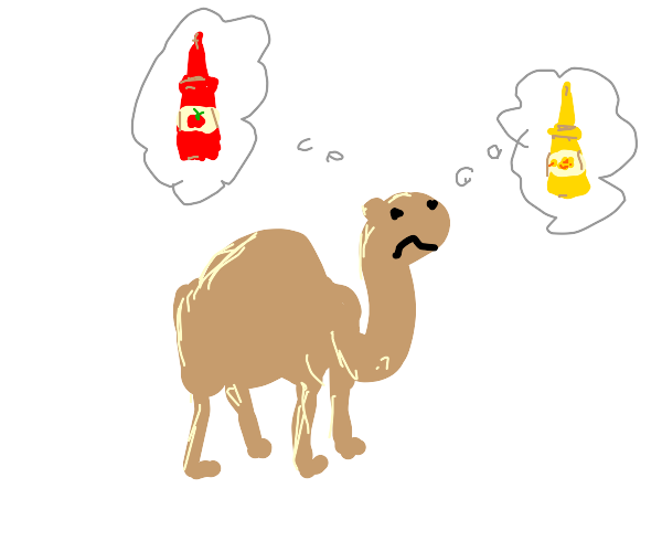 Camel thinking about ketchup and mustard