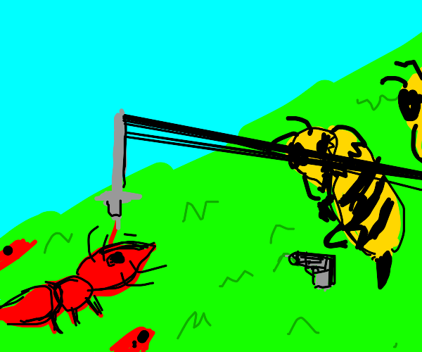 Bees and Fireants go head to head in battle