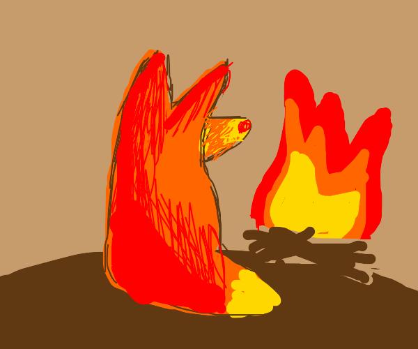 Firefox literally