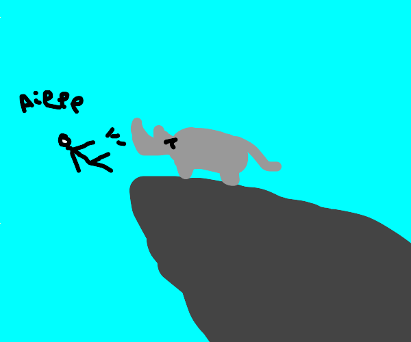 rhino yeets man off cliff
