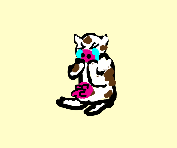 Crying cow