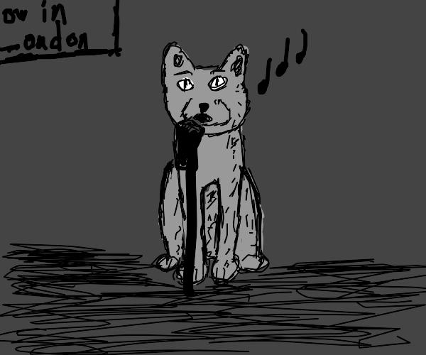 british cat is a singer