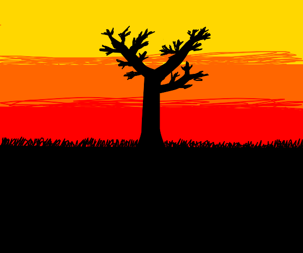 Tree in the sunset...........................