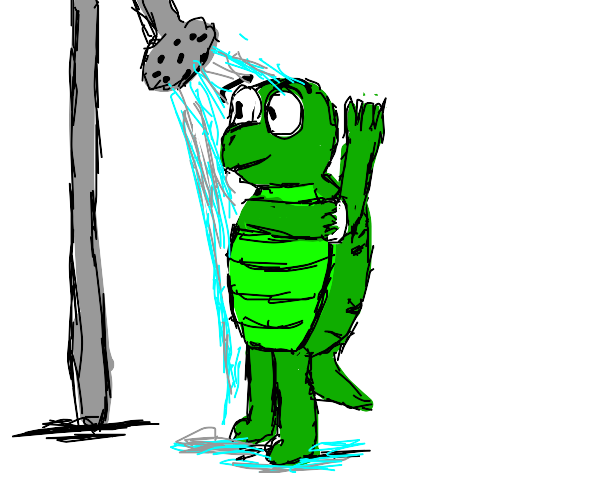 Turtle taking a shower