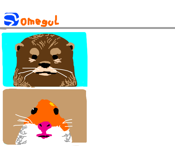 Otter on omegle