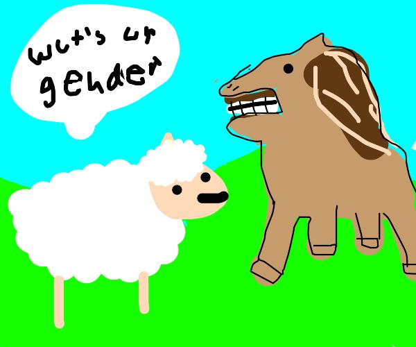 sheep asks horse it's gender