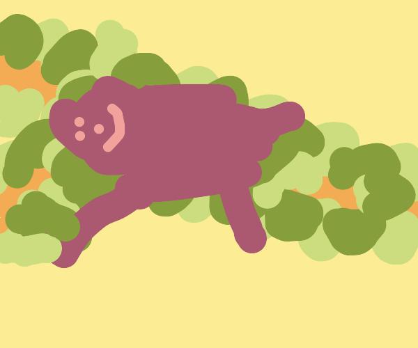 A humble sloth