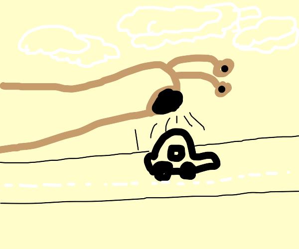 Slug eating car