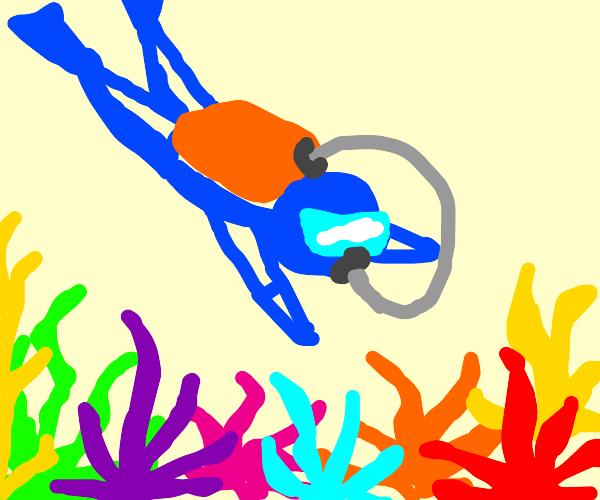 A scuba diver exploring a reef