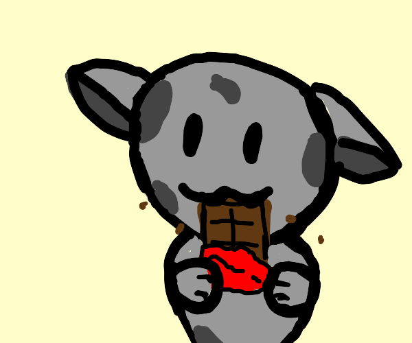 Spotted gray cat eats a bar of chocolate
