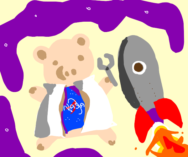 Pig Rocket Scientist