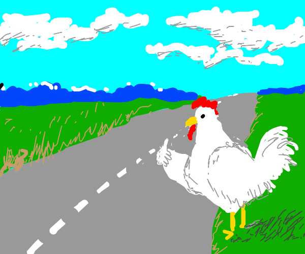chicken is lost on the road