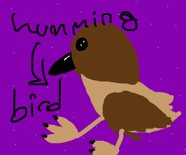 Space Hummingbird