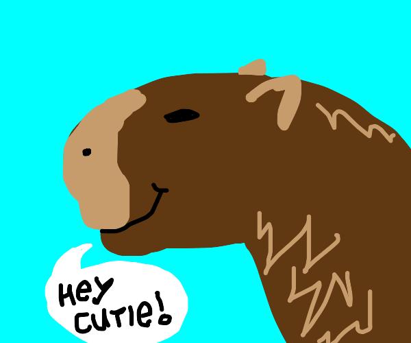 capybara smiles at you