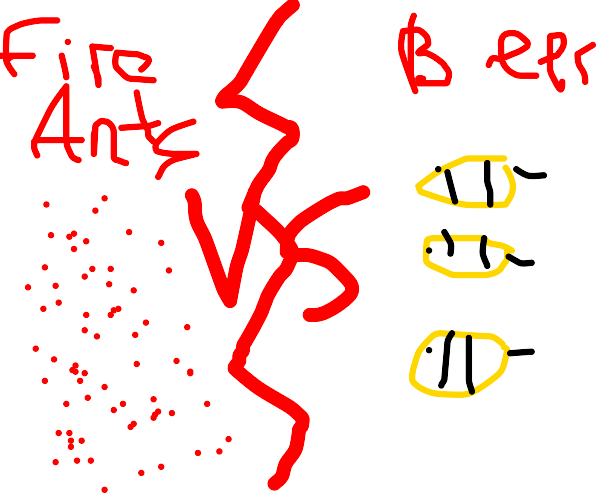 Fire ants and bees go to war