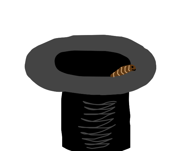 worm in a hat