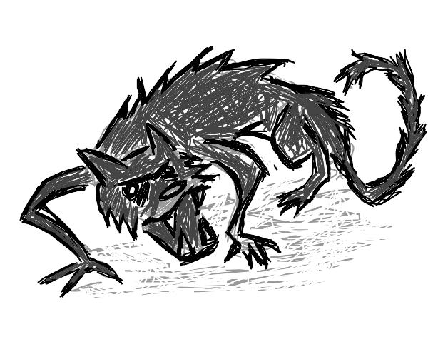Black cat is furious
