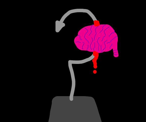 Brainy Hook