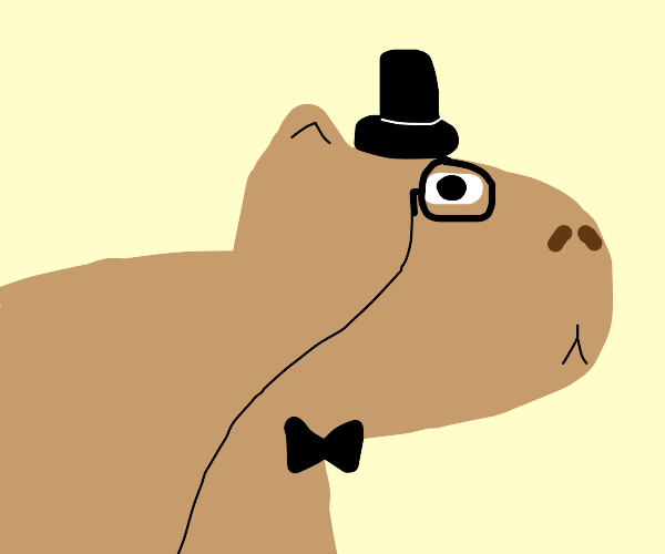 dapper capybara