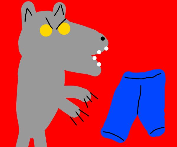 Beast Titan vs Levi