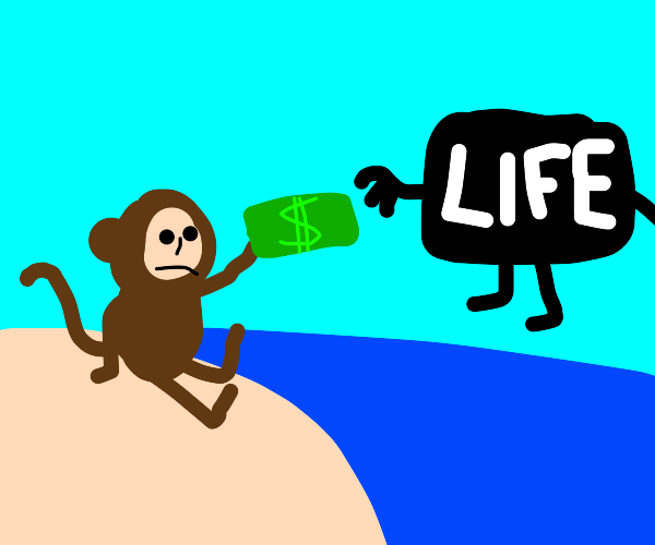 monkey looks at sea and compensates life