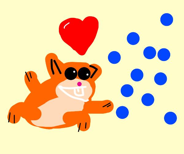 Deranged hamster loves blueberries