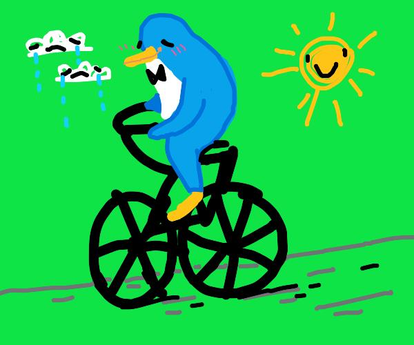 penguin on a bike