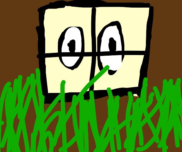 Man stares through window at grass outside