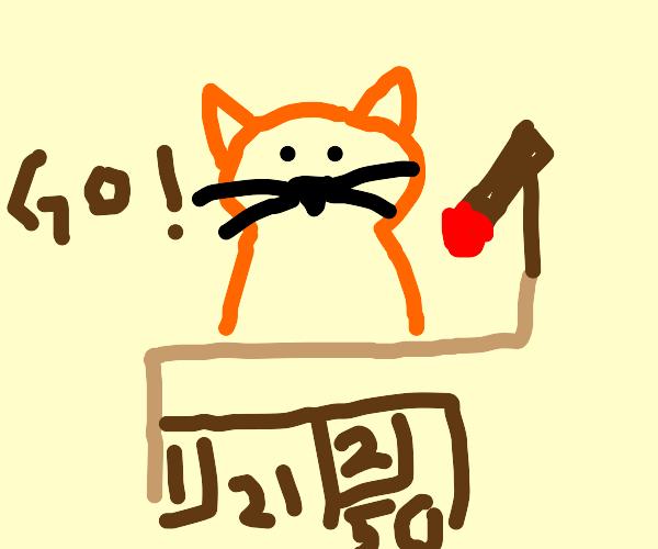 Cat sports announcer