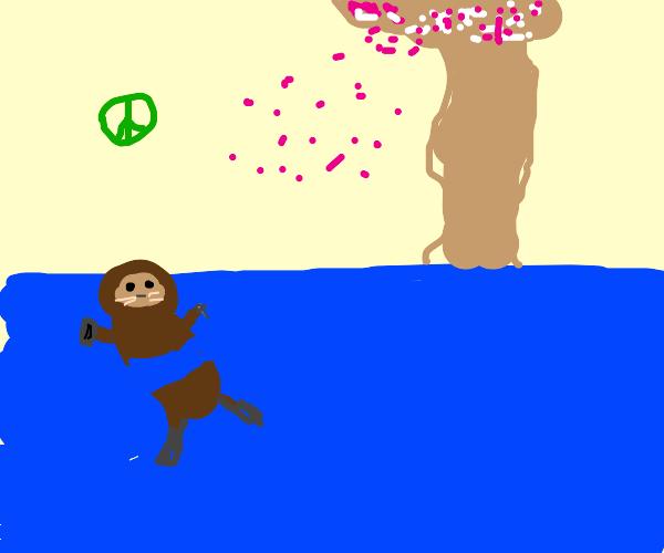 Peaceful Otter