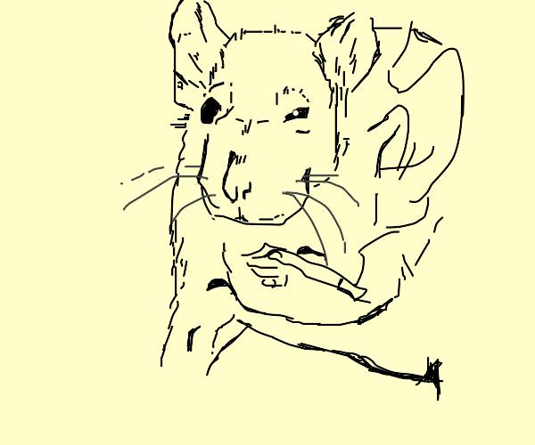 depressed jerma rat