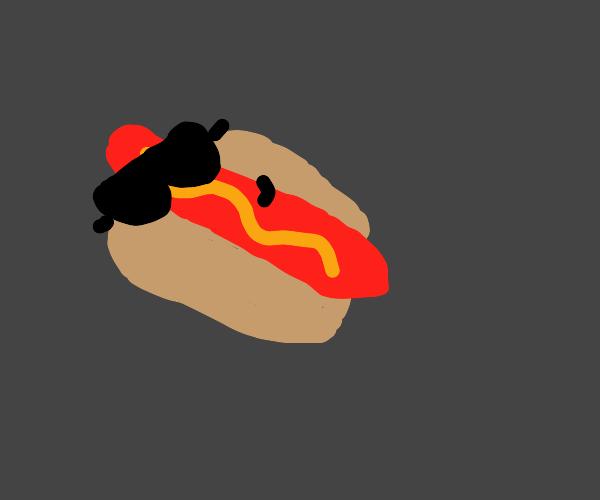 cool hotdog